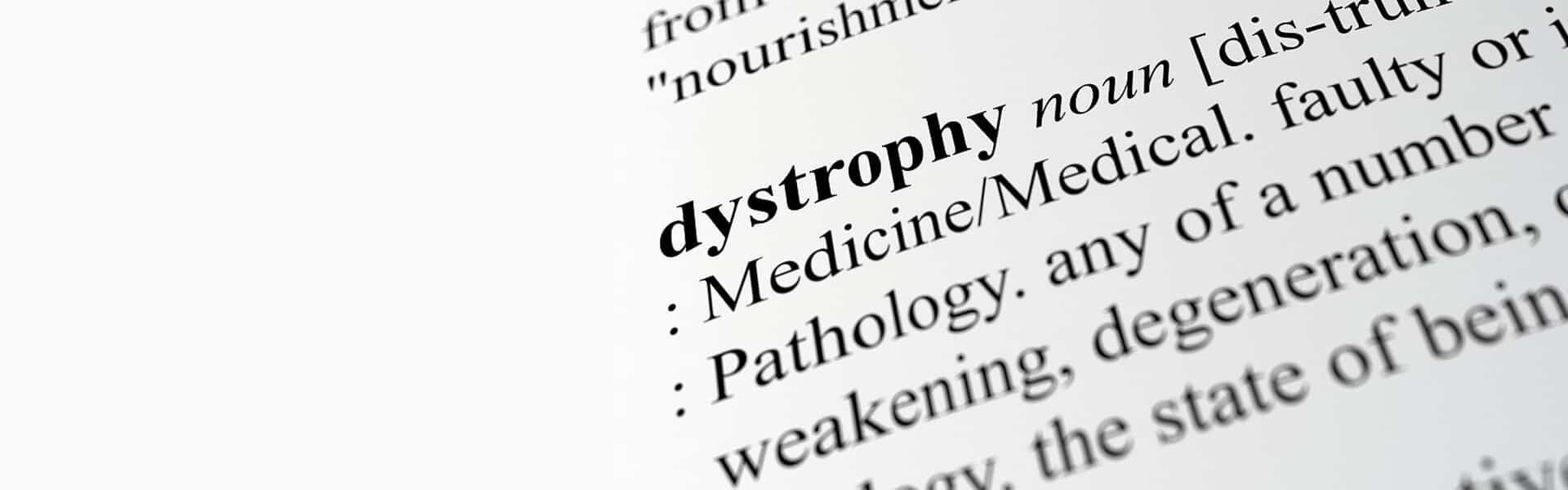 Dystrophy Blog Banner